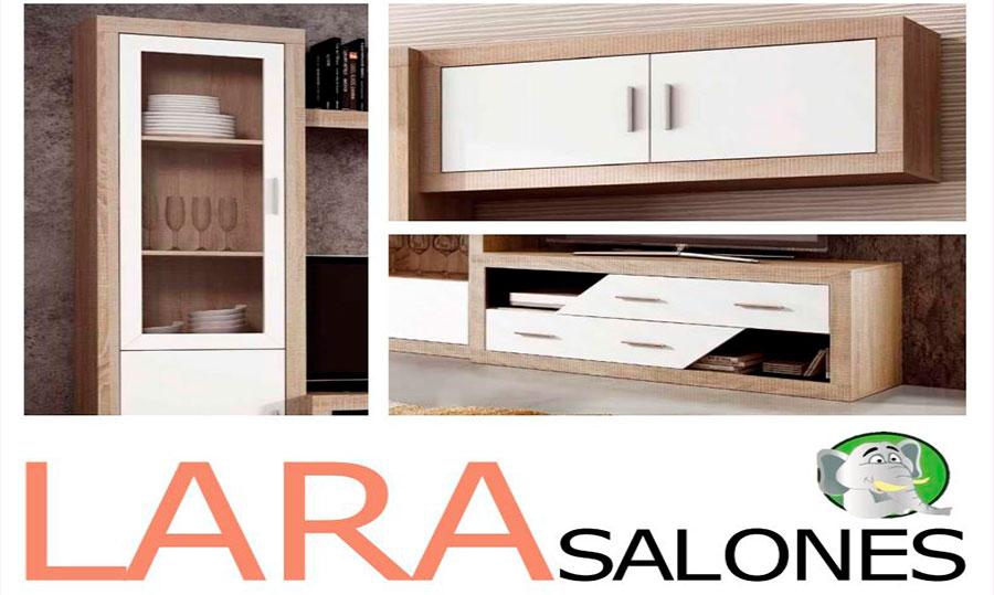 Salones-Lara-Web